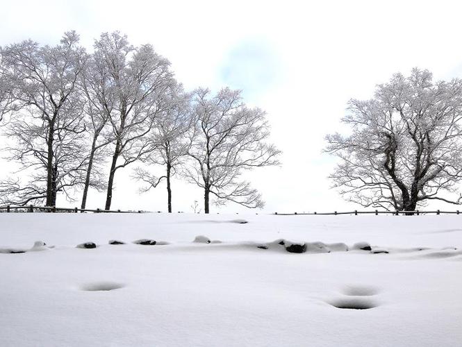 冬之洞爺湖 • 旅中隨帖