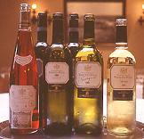 西班牙Rioja酒鄉之旅 (2002.01.11)