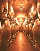 北義大利酒鄉之旅(上)(2003.07.08)