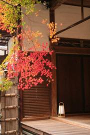 漫遊,京都今與昔